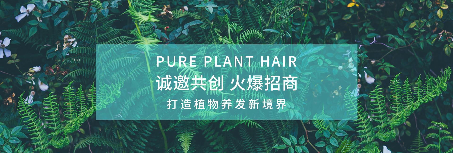 植物养发加盟